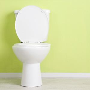 Toilet 300square