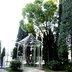 ラファエル教会リガーデン施工