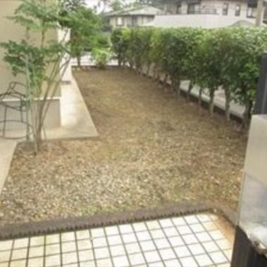 | 草刈り・剪定前 裏庭