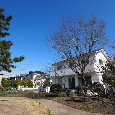 新築注文住宅緑に囲まれた家