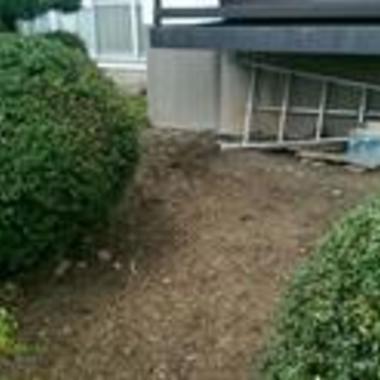 お庭の草取り・伐採作業・剪定後