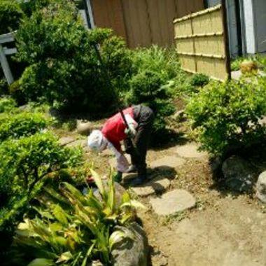 庭掃除途中