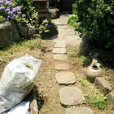庭掃除前後