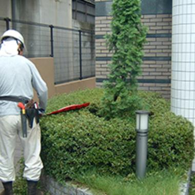 ビルメンテナンス 植栽管理