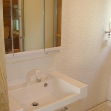 大きな鏡と収納の多い洗面台