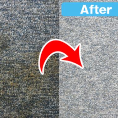 ハウスダスト除去前後のカーペットの比較