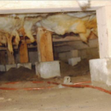 シロアリ駆除後の床下