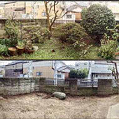伐採作業前後の庭