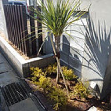 高木・シンボルツリー植込み後の花壇