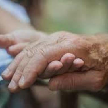 | 高齢者・困り事お手伝い