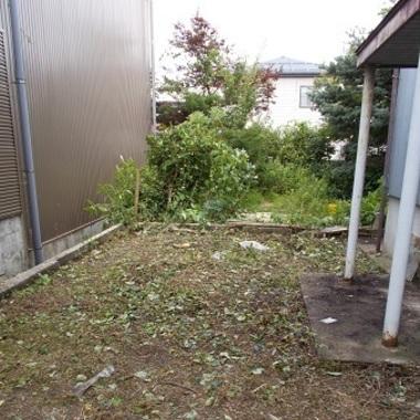 | 庭木伐採前後 家の裏庭にある庭木