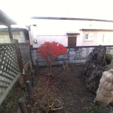 | 冬の庭支度 冬囲い