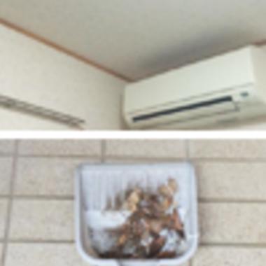 青梅市 各室内側から目視による雨漏り・カビ発生の有無の確認