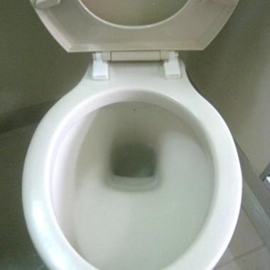 クリーニング後 洋式トイレ