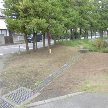 | 草刈り後の敷地