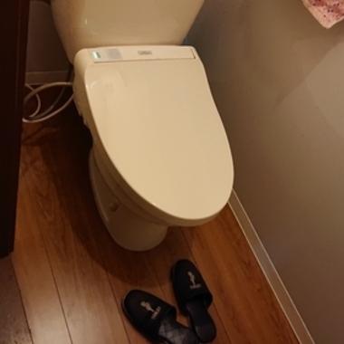 トイレの床・内窓・板リメイクの施工後写真(0枚目)