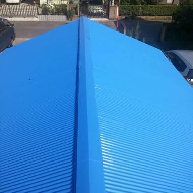 屋根・手摺塗装の施工後写真(0枚目)