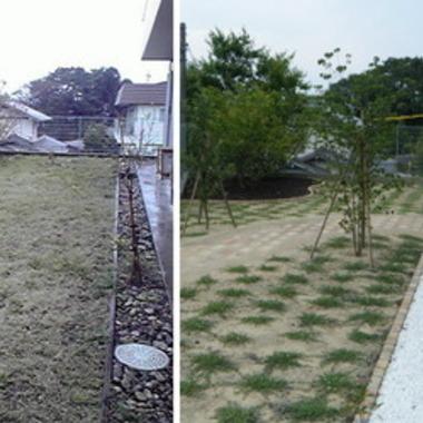 庭 メンテナンス前後の比較画像
