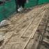 屋根瓦 葺き替え工事施工前