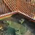 屋上防水ウレタン 手摺塗装工事 前 アップ