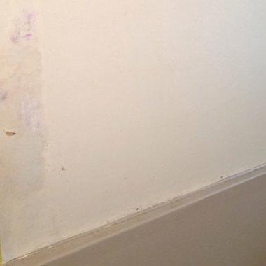 バスルーム塗装前