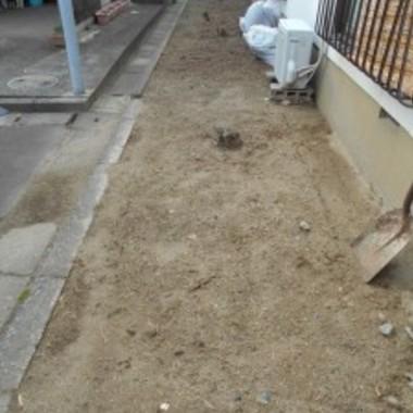 庭の草対策前