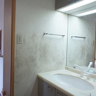 リノベーション前 洗面所