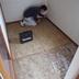 室内階段設置部分 床部分工事中