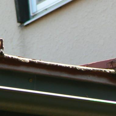 トタン屋根交換前