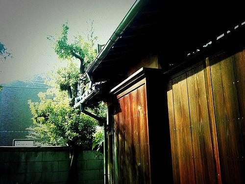 シャッター 設置 | 雨戸の交換・修理の費用相場とポイント