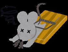 ネズミ駆除の費用相場とポイント