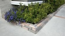 モルタルで庭づくりをしよう!DIYや業者に依頼するポイントを解説