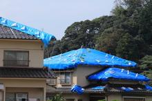 台風被害は火災保険でどこまで対応できる? 適用条件を詳しく解説